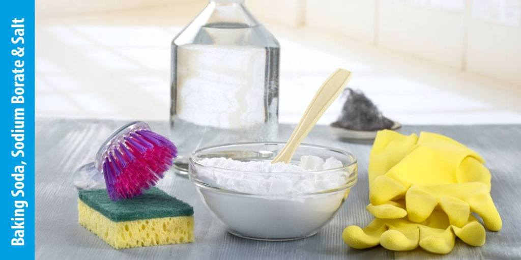 Sodium Borate, Baking Soda, Salt and Detergent Ingredients
