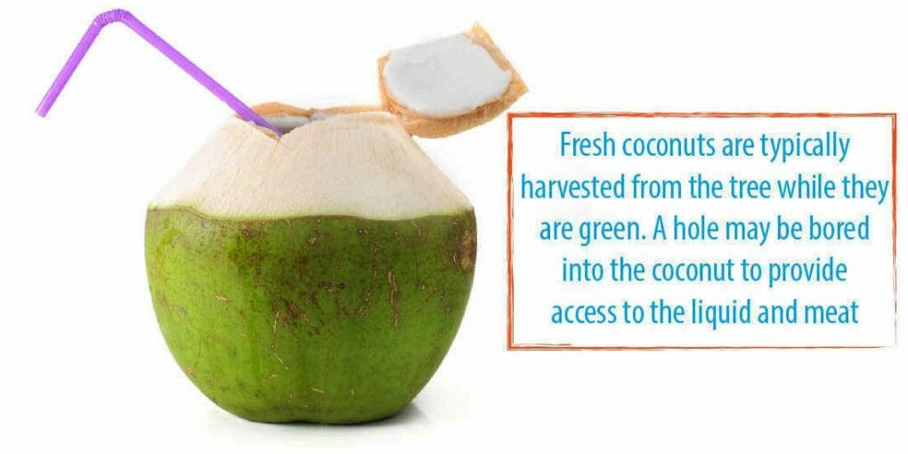 http://www.waterev.com/make-coconut-water-taste-better