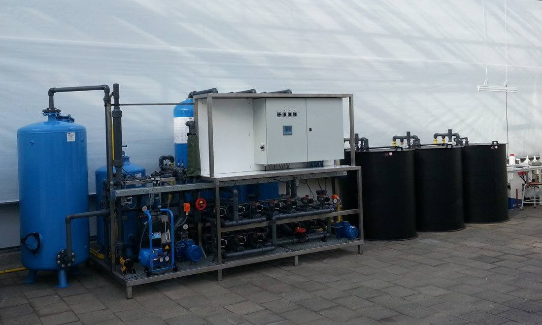 Anionic Exchange Systems