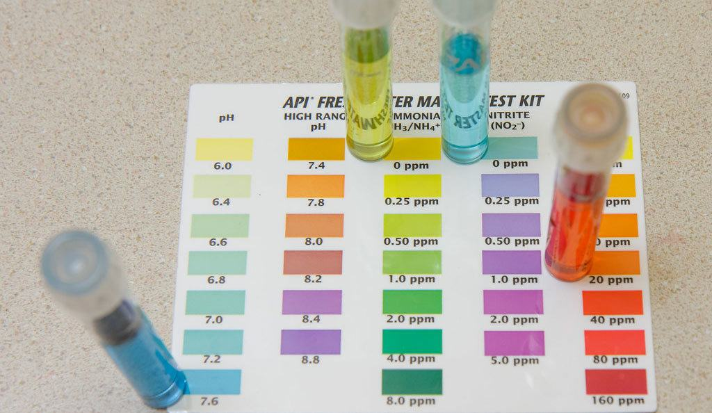The Benefits of Using Water Test Kits